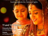 Gauteng Diwali Festival 2014 Gold Reef City